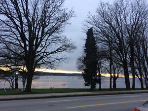 2-3 bedroom/ downtown/Barnaby/west side/Kitsilano .....