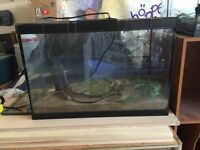 20 gallon tank with wire top