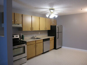 Discovery Place Two Bedroom Apartment for Rent in Sunningdale