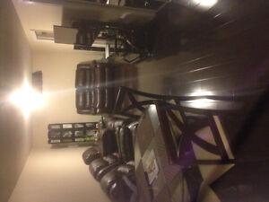 1 bedroom fully furnished /renovated basement apartment