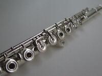 Professeur de flûte traversière et saxophones sur le Plateau