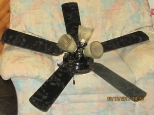 Ceiling Fan with light fixture.