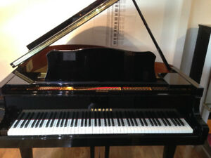 Yamaha grand piano G2 &  C3