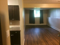 2 Bedroom Condo Across from Park