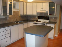 Available Nov 1st…. fresh, quiet & clean 2 Bedroom Apartment