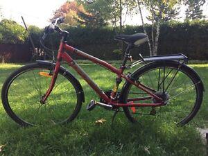 Vélo - sac de frappe