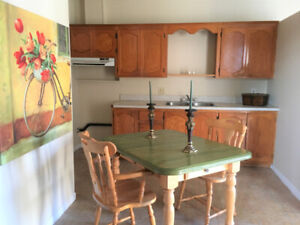 Beautiful 2 bedroom apartment available in Grand Falls, NB