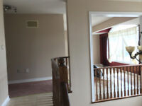 Reliable Professional painters