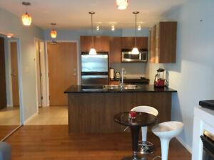 Quiet Junior Furnished One Bedroom Downtown/Yaletown