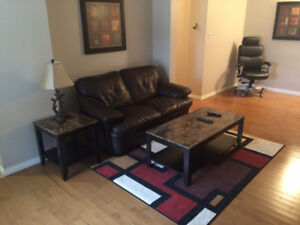 Fully Furnished Unit for the Short-term Relocated Professional