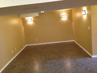Basement suite – Clean, private laundry, UTILITIES INCLUDED