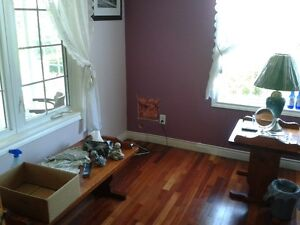Christmas holiday special house for sale St. John's Newfoundland image 5