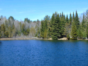 Terrain Rawdon 26 acres lac