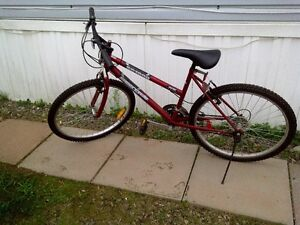 18 speed Mountain Bike for sale