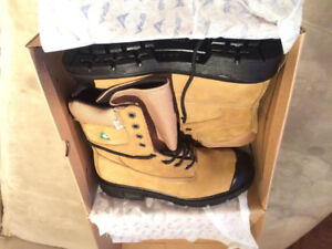 Safety Shoes (Brand New)