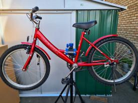 """Neuzer 20"""" girls bikes"""