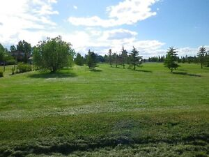 GREAT VALUE 1 ACRE IN TOWN OF VULCAN