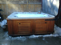 arctic spa hot tub