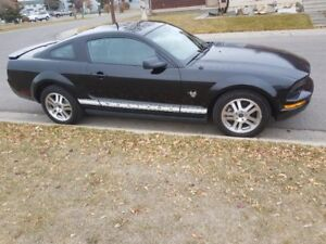 2009 Ford Mustang-  Pony Edition