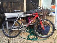 Saracen fassttrax mountain bike