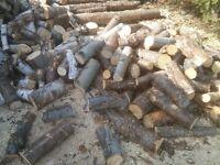 fire wood bois