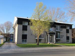 Beau 12 logements (11 X 4 1/2 et un 2 1/2).