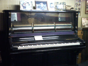 musical instrument piano and bench