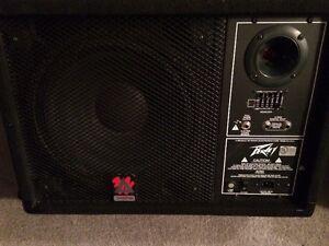 "Pair of Peavey powered 12"" monitors $350"