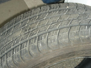 Premium Touring Tire M+S Toyo 800 Ultra