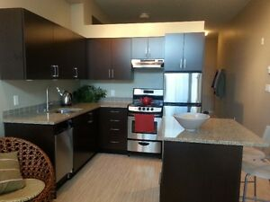 beautiful modern condo available to rent