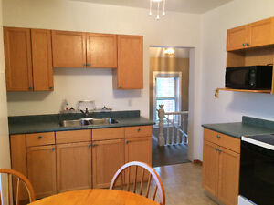 Bright. clean, furnished 2 bedroom apartment