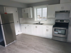 2 bedroom basement in langley