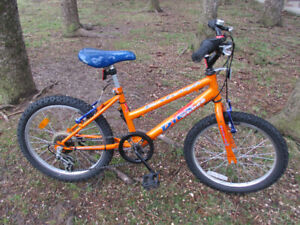 Fantastic Raleigh 5 Speed - Fast And Rugged - For Smaller Riders