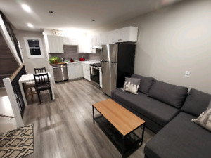 Furnished Brand new 2 level 1 bed 1.5 bath apt Downtown