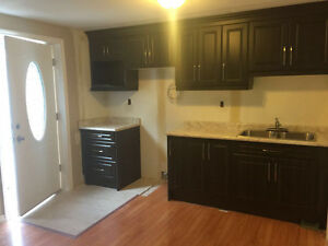 2 bedroom walkout basement for rent