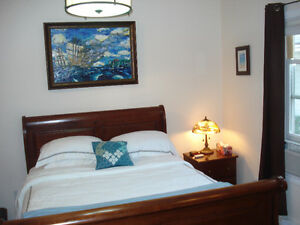 Bachelor Executive Suite downtown - Available