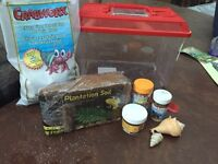 Hermit crab with everything you need