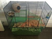 Two gerbils, plus cage and accessories for sale.
