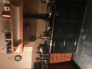 Kitchen cabinets modern, great condition .