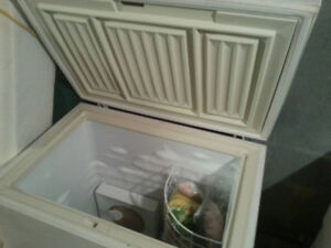 Small Freezer, Perfect for Apartment