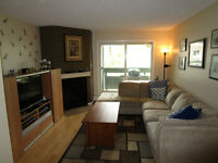 1 bdrm apartment in Southwood Avail Aug 1 $1200/month N/S