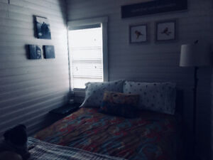 Newly renovated oceanfront cottage in Port Howe, near Pugwash NS
