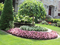 1 aide-jardiniere ( horticultrice )