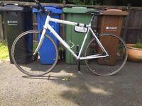 Carerra Gryphon Hybrid Mountain Bike
