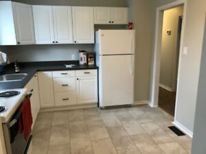 Room for Rent in Student House