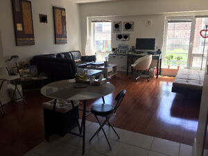 4 1/2 Condo 2 Bedroom 2 Bathroom Downtown Montreal / Old Port