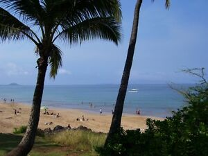 SPRING IN MAUI...ONLY $105.00 US/NIGHT