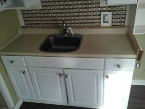counter top with sink $60
