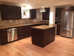 Newly Renovated, LEGAL basement apartment for rent