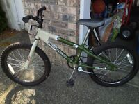Norco ZX 80